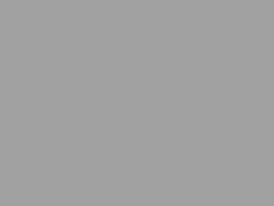 Fischerartdesign